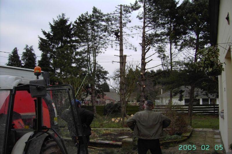 Entretien parcs et jardins sombreffe et hainaut engrais for Entretien jardin 22
