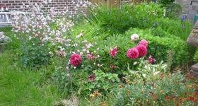 Entreprise de Jardin Latour - Sombreffe - Entretien de parcs et jardins